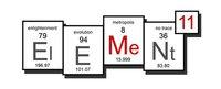 E11 2011 Element