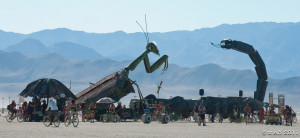 mantis vs scorpion!